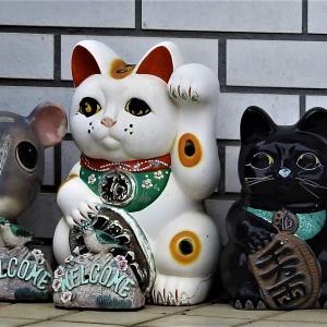 招き猫の置物 感動感激感謝写真