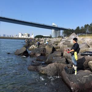 2019年11月9日 若洲海浜公園 完全試合
