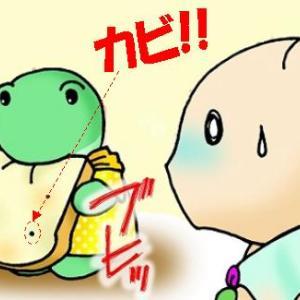 ☆危険!カビの生えたモノを食べると怖~い○○に!!☆