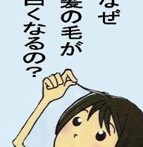 ☆白髪を防止する3つの極意って?!☆