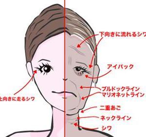 ☆老け顔を防止する表情筋トレって?!☆