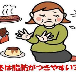 """☆""""冬は脂肪がつきやすい""""はウソって?!☆"""