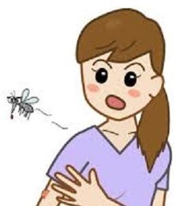 ☆蚊に刺されやすい人の特徴って?!☆