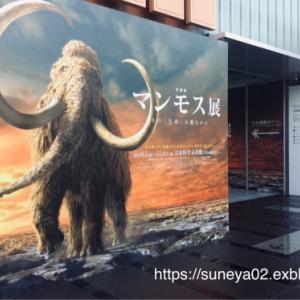 「マンモス展」に行って来ました。