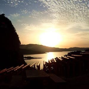 中国・九州を楽しみました。