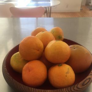 キッチンのお片付け~食品の管理