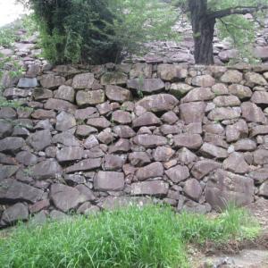 小さい石が並ぶ