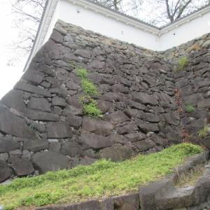 荒々しい石垣