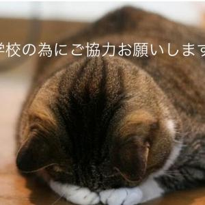 募集終了まであと4日②(達成まで55%必要です)東京中高クラウドファンディングご協力ください