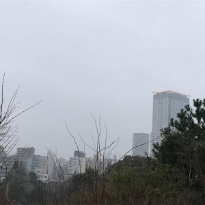 西郷山公園柴散歩 すっきりしない天気だけど