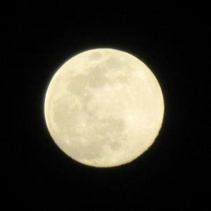 明日は天秤座満月(スーパームーン)