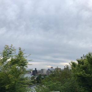 西郷山公園柴散歩 若いお友達