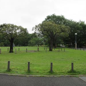 中目黒公園柴散歩 雨が降らないうちに