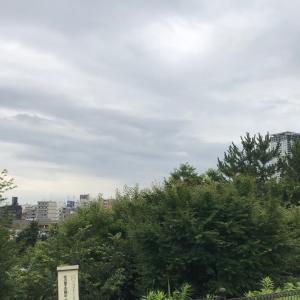 西郷山公園柴散歩 久しぶりの豆柴さん
