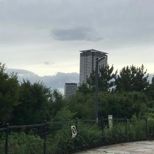 西郷山公園柴散歩 相変わらずの旅客機
