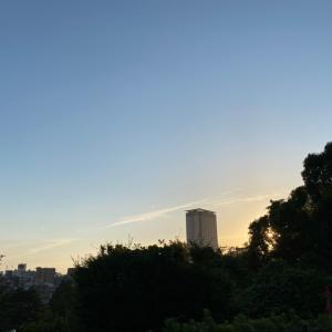 西郷山公園柴散歩 爽やかな夕方