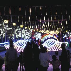 稲沢市/国府宮参道・稲沢イルミネーション始まる