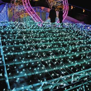 名古屋港、光の彩り 7日からイルミネーション