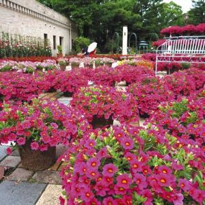 久屋大通庭園フラリエ/ミリオンベルの庭