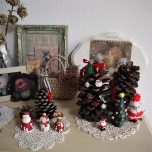クリスマスの飾り方~♪  ギリアの発芽