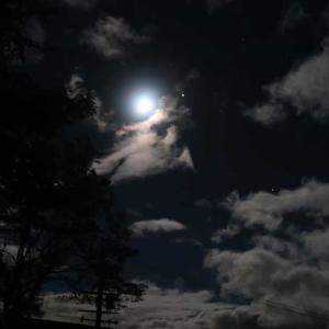 昔は月の光で勉強をした
