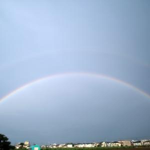 二重の虹!