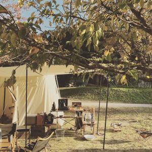 楽天購入品と今度こそラストキャンプ。