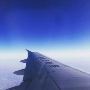 子連れ海外旅行(フライト編)