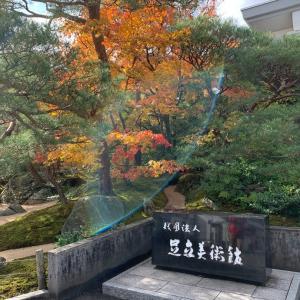 秋の足立美術館は素晴らしい!!
