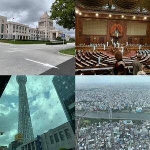 スカイツリーと国会議事堂