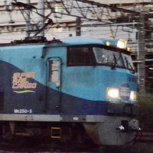 JR貨物【スーパーレールカーゴ】~TRAN'SPORT!~