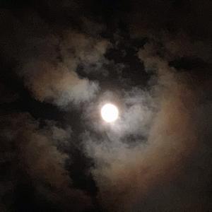 満月なの?