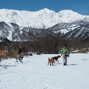 雪山キャンプ