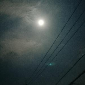 十五夜お月さん雲の影~♪♪♪