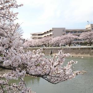 金沢や野々市、私立・公立の違いはあれど、要はこの先が見えないってことですね!