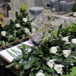 南方熊楠翁名誉市民称号称号授与墓前報告会・南方熊楠翁を偲ぶ会