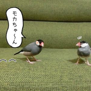本日のひとこま(11/7追記)