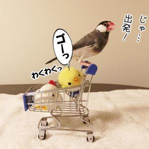 空の旅へ、ゴー!(11/19追記 モカver.)