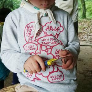小枝と子どもと遊びと世界