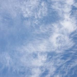 【募集開始】4/21(水)青空ひろばの募集を開始します!