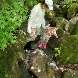 5/25(火)梅雨の恵み(親子組さやまめ)