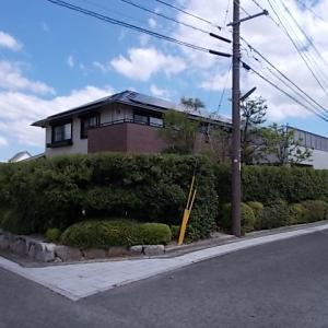 筑紫野市美しが丘南でカシ、モミジ、ウバメガシの生垣を剪定しました。