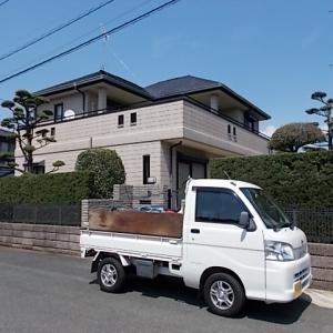 筑紫野市桜台でマキ、モミジ、ウメ、ラカンマキの生垣を剪定しました。