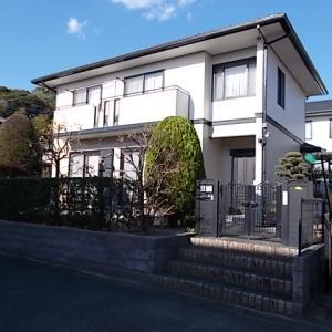 筑紫野市原でマキ、カリン、ウメ、コニファー、ラカンマキの生垣を剪定しました。
