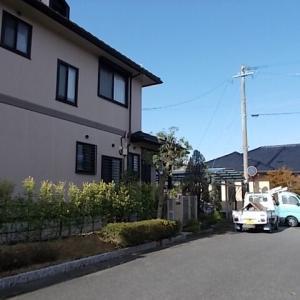 久留米市小森野でヤマモモ、コニファー、黄金マサキ、サツキの生け垣を剪定しました