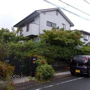 県外から筑紫野市美しが丘北の留守宅剪定をご依頼いただきました。