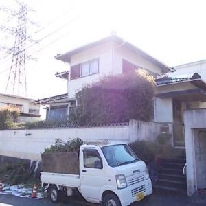 筑紫野市筑紫台でキンモクセイの生垣、ウメ、モチノキを剪定しました。