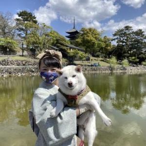 小豆とお姉ちゃんと奈良へドライブ