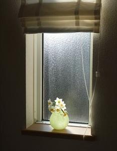 窓辺の花 水仙