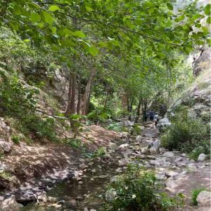 小さくても滝 Millard Canyon Falls Trail